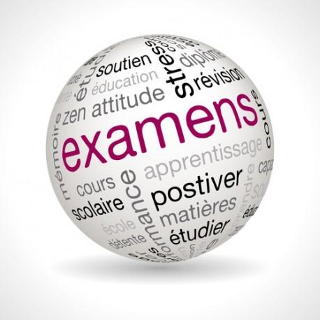 Frais d'Accompagnement à l'Examen Pratique B